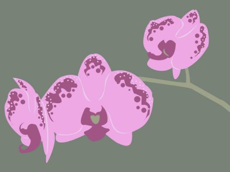 Orchid Trio by emulren