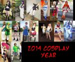 2014 Cosplay Year in Review by kojika