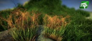 Realistic Grass and Bush Pack2 by RakshiGames