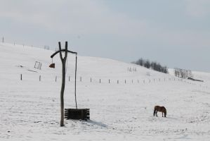 Late snow in Hungary by loganmiracle
