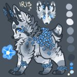 IRIS by EnchantedAdopts