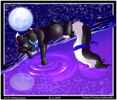 Moonlight by WhiteLiolynx