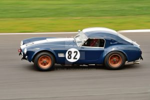 Mark Williams Cobra N0 82 by Willie-J