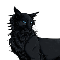 13. Brother of Starless Night by CaptainMorwen