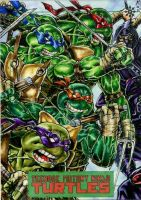 TMNT team TMNT by IDW by DKuang