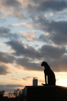 Sentinel by blackdahlia