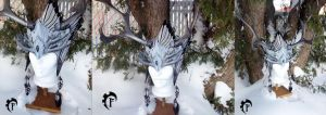 Winter spirit crown by Feral-Workshop