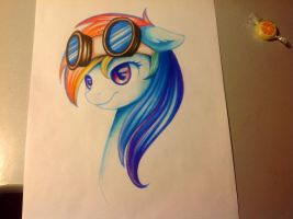 Rainbow Dash by Mausefang