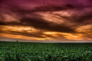 sunset.. by Ditze
