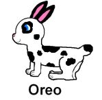 The Pet Bunch character: Oreo by Priveto4ka