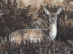 Ghost Deer by MorRokko