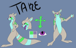 TakeRefsheet by ArticFox1