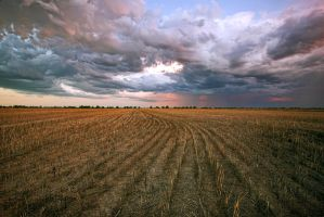 After The Harvest by Sun-Seeker