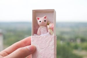 Tiny pink cat by freedragonfly