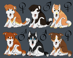 Puppy Point Adoptables2 - CHEAP by xDoglate