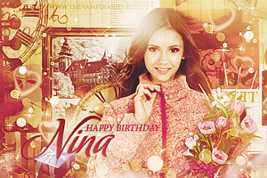 HP.Nina Dobrev by favouritevampire