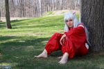 Inuyasha The Half-Demon by cloudstrife597