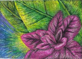 Scratch Art Flower by kimberly-castello