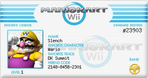Mario Kart Wii License by ElectricCoffee