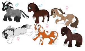 .+Horse Adoptables OPEN+. by KesiLegend