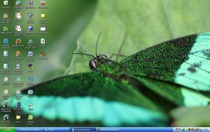 green butterfly desktop by Gothic-Enchantress