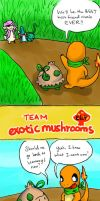 PMD-E Team Exotic Mushrooms: E6.4 by sennenryeo