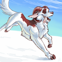 Snow Dog by danke-kitten