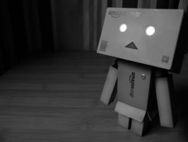 Danbo what it is... by filsru