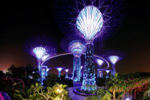 Gardens by the Bay v1 by inckurei
