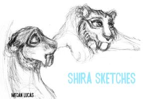 Shira Sketches by MademoiselleMeg