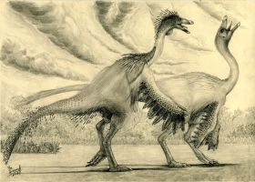 Ornithomimus edmontonicus by T-PEKC