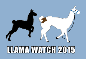 Llama Watch 2015 by JMKohrs