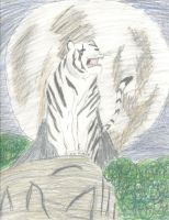 White Tiger by rainofphyre