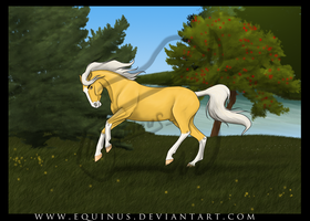 Golden Freedom by Equinus