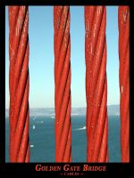 Golden Gate Bridge Cables by technohoot
