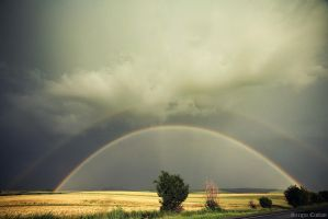 rainbow by Sssssergiu