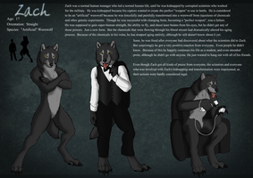 Zach Character Sheet by sugarpoultry