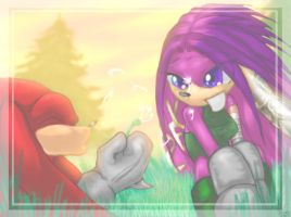 Sun-basked Fields by KnuxXJulie-Su-Fans