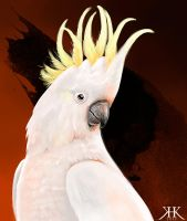 Yellow Crested Cockatoo by Paivatar
