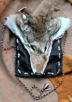 Trickster coyote pouch by lupagreenwolf