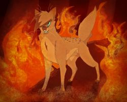 My quarrel is with YOU Squirrelflight by iSherie