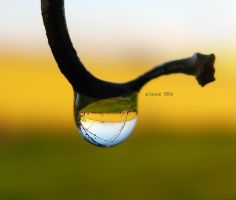 a droplet 2 by sinanTR