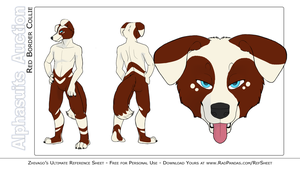 Border Collie Auction Suit by alphasuits