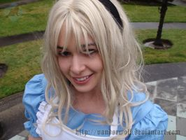 Alice in Wonderland by VandorWolf