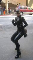 A catwoman on the run by Cliffather
