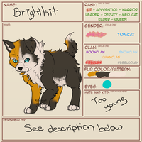 Brightkit | The Warriors Guild | Character Sheet by AlchemistKitsune