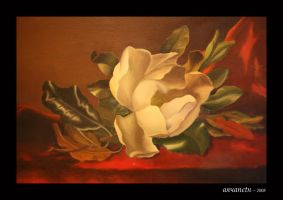 The Magnolia by aryaneth