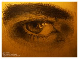 Eye... for you. by pablorenauld