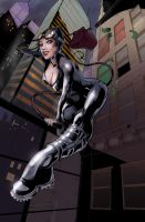 Catwoman - Colored by duplex2