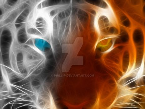 Evanescent Tiger II by phill-p